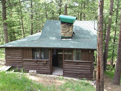 5005 White House Trail, Evergreen, CO 80439 - #: 5333008