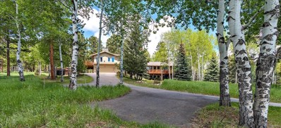 8547 S Custer Lane, Evergreen, CO 80439 - #: 5344187