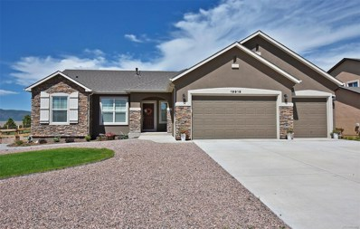 19916 Alexandria Drive, Monument, CO 80132 - MLS#: 5381261