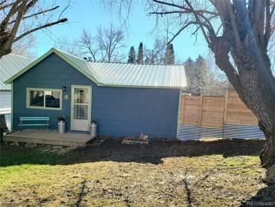 223 Carbon Avenue, Oak Creek, CO 80467 - #: 5413211