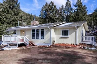 31071 Haldimand Drive, Conifer, CO 80433 - #: 5439172