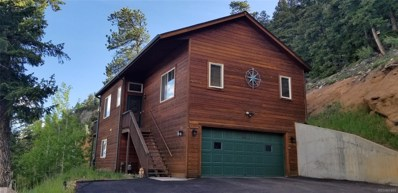 31337 Kings Valley, Conifer, CO 80433 - #: 5473149