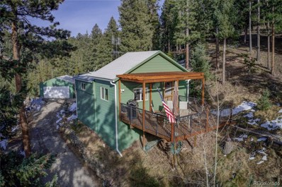 6786 S Brook Forest Road, Evergreen, CO 80439 - #: 5475919