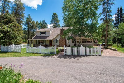 29152 Shadow Mountain Drive, Conifer, CO 80433 - #: 5487261