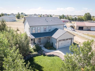 16645 Joppa Court, Brighton, CO 80603 - #: 5496946
