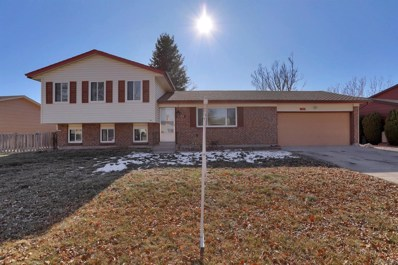 4335 Seesaw Lane, Colorado Springs, CO 80917 - MLS#: 5515402
