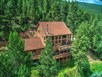 10499 Sunlight Lane, Conifer, CO 80433 - #: 5541250