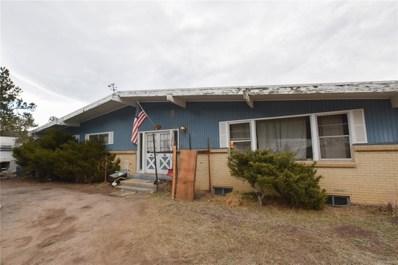 28089 Pine Drive, Evergreen, CO 80439 - #: 5588173