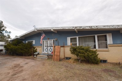 28089 Pine Drive, Evergreen, CO 80439 - #: 5588173