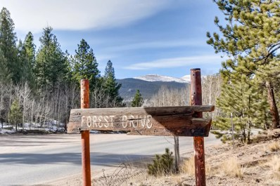 66 Forest Drive, Bailey, CO 80421 - MLS#: 5610987