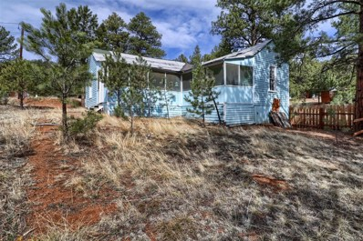28377 Morrison Avenue, Pine, CO 80470 - MLS#: 5632673