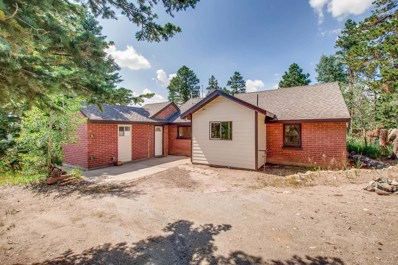 19137 Highway 119, Black Hawk, CO 80422 - #: 5669413