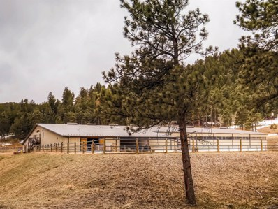 22828 Inca Road, Indian Hills, CO 80454 - #: 5782861