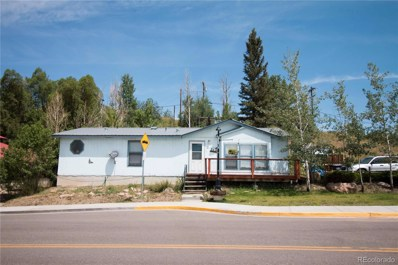217 E Main Street, Oak Creek, CO 80467 - #: 5844030