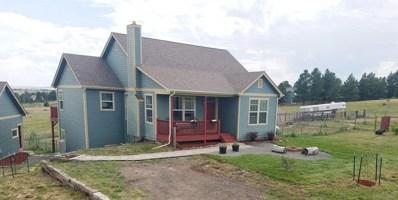 27733 View Circle, Kiowa, CO 80117 - #: 5904699