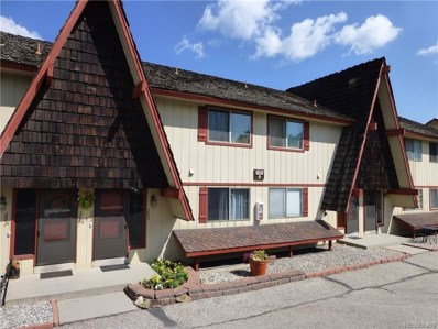110 Evergreen Road UNIT 303, Dillon, CO 80435 - MLS#: 5991560
