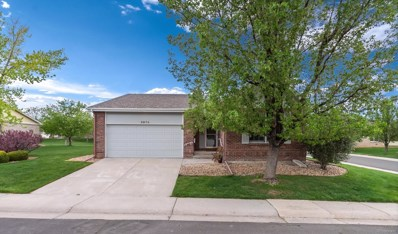 8979 Greenspointe Lane, Highlands Ranch, CO 80130 - #: 6018203