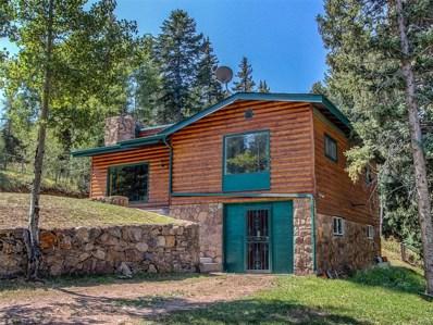 28233 Meadow Trail, Conifer, CO 80433 - MLS#: 6058798