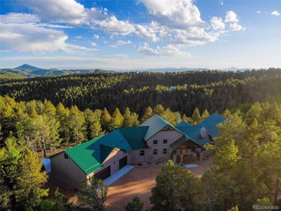 252 Running Elk Point, Divide, CO 80814 - #: 6094696