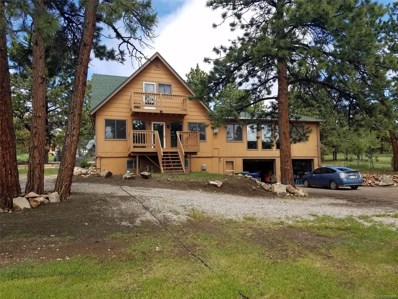 80 Fawn Road, Bailey, CO 80421 - #: 6101644