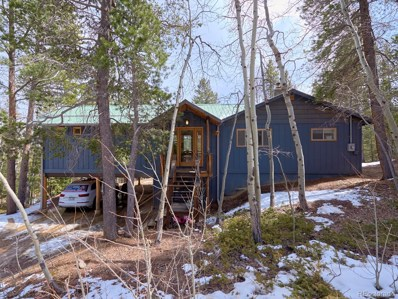 178 Upper Travis Gulch Road, Black Hawk, CO 80422 - MLS#: 6141776