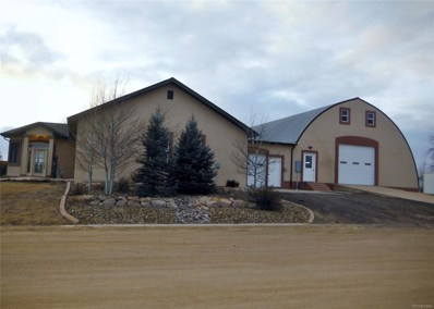 15 Main Avenue, Flagler, CO 80815 - #: 6186156