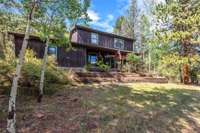 13713 S Wamblee Valley Road, Conifer, CO 80433 - #: 6201374