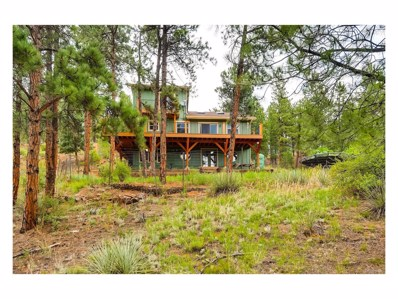 16626 Ouray Rd W, Pine, CO 80470 - MLS#: 6205521