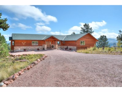 608 Elk Lane, Guffey, CO 80820 - MLS#: 6219845