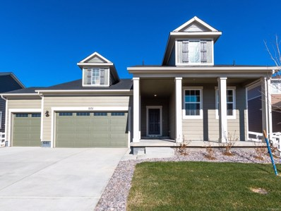 1031 Goldenrod Parkway, Brighton, CO 80640 - #: 6262865