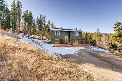 12019 Circle Drive, Conifer, CO 80433 - #: 6280324