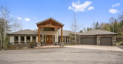 12544 Wild Trout Trail, Conifer, CO 80433 - #: 6393816