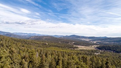 29379 Thunderbolt Circle, Conifer, CO 80433 - #: 6537468