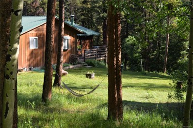 28902 Shadow Mountain Drive, Conifer, CO 80433 - #: 6589988