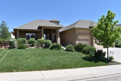 28 Saber Creek Drive, Monument, CO 80132 - #: 6598279
