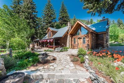 863 Mill Creek Road, Dumont, CO 80436 - #: 6604658