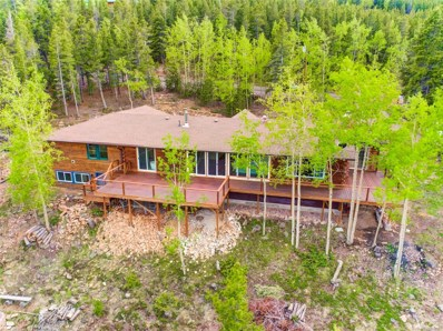 10856 Timothys Drive, Conifer, CO 80433 - #: 6692493