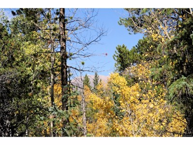 933 Busch Run, Fairplay, CO 80440 - MLS#: 6699246