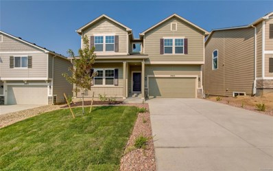 19463 Lindenmere Drive, Monument, CO 80132 - MLS#: 6728668