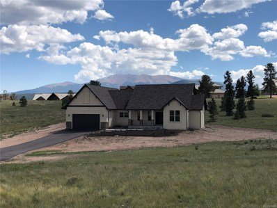 107 Samantha Way, Divide, CO 80814 - MLS#: 6775045