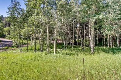 6753 Snowshoe Trail, Evergreen, CO 80439 - #: 6815171