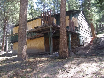 26215 Wild Flower Trail, Evergreen, CO 80439 - #: 6865505