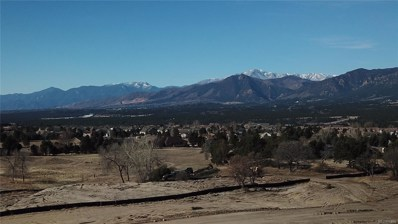 310 Silver Rock Place, Colorado Springs, CO 80921 - MLS#: 6883492