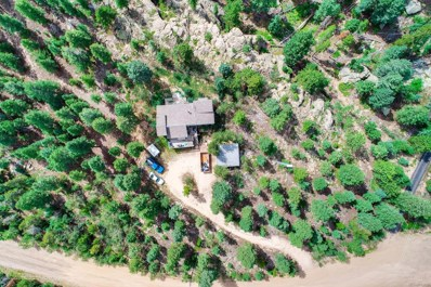 29682 Bearcat Trail, Conifer, CO 80433 - #: 6884650
