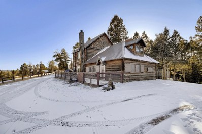 37 Lost Lake Drive, Divide, CO 80814 - MLS#: 6894177