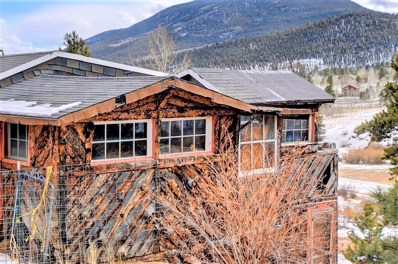 6668 County Road 43, Bailey, CO 80421 - #: 6916980