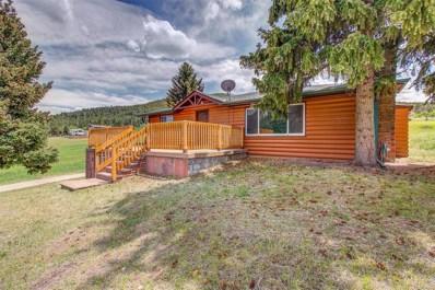 25802 Duran Avenue, Conifer, CO 80433 - #: 7001435