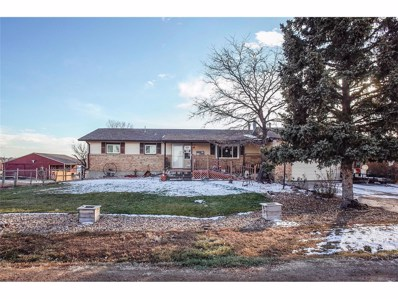 10082 E 157th Place, Brighton, CO 80602 - MLS#: 7004747