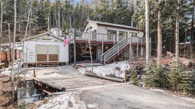 34788 Forest Estates Road, Evergreen, CO 80439 - #: 7040031