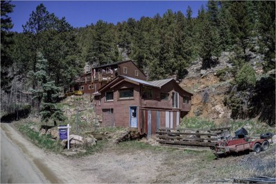 1524 Beaver Brook Canyon Road, Evergreen, CO 80439 - #: 7045523